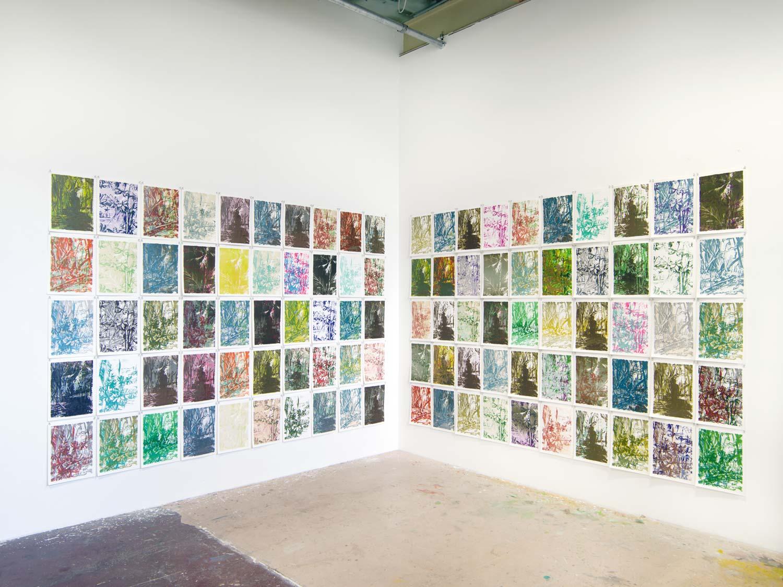 Die Abbildung zeigt die Ecke eines Raumes mit weißen Wänden. An beiden Wänden sind als Raster je fünf mal zehn Lithographien mit tropischen Motiven in breiter Farbpalette von dunklen Violetttönen bis Zitronengelb gehangen.